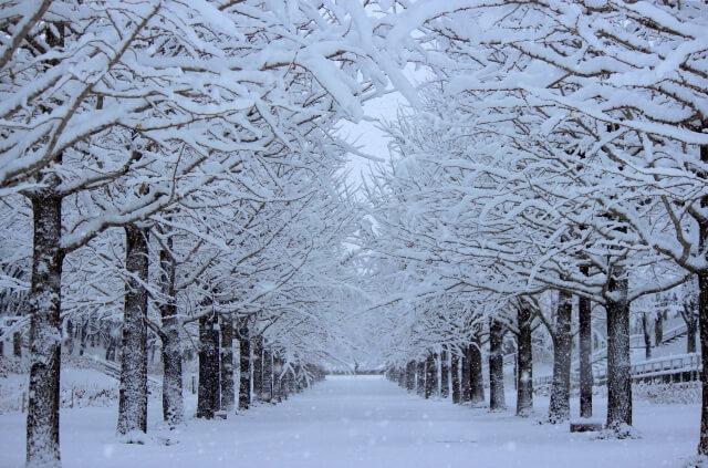 立冬 意味