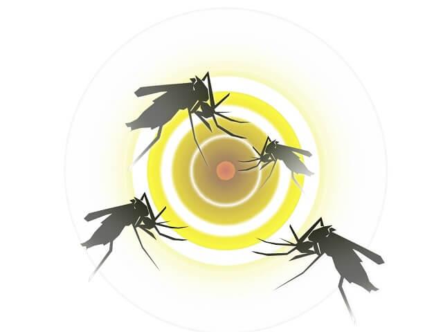 蚊 捕まえる罠