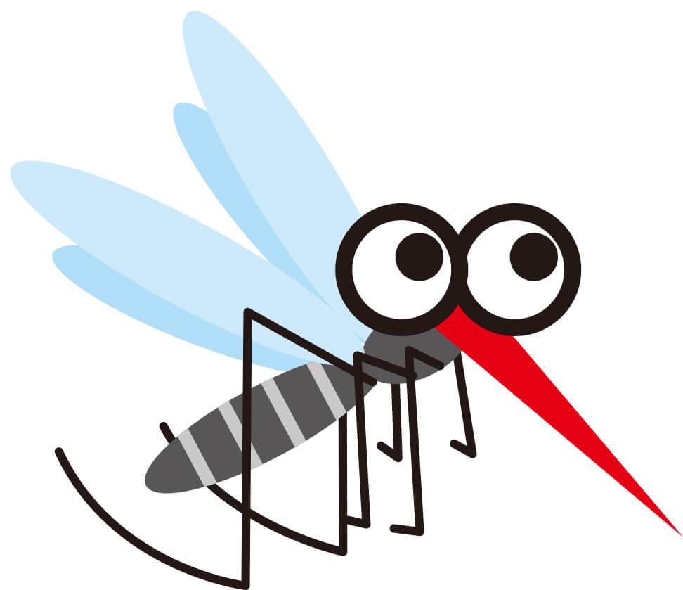 蚊 メスしか吸わない